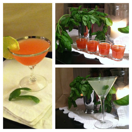 Tequila drink recipes